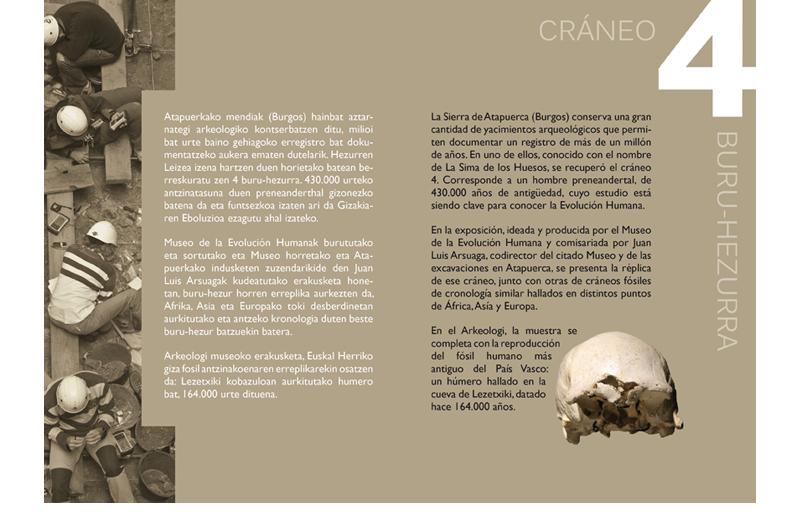 Erakusketa Atapuerca Exposición 2 Bizkaiko Arkeologi Museoa
